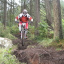 Photo of Neil GOLDSWORTHY at Yellow Water Forest, Co. Down