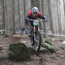 Photo of Damien MCCORMICK at Rostrevor