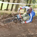 Photo of Steffen KERR at Ae Forest