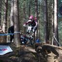 Photo of Daniel DRAPER (vet) at Greno Woods