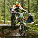 Photo of Mark MORRIS at Yellow Water Forest, Co. Down