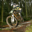 Photo of Brendan SLUDDS at Yellow Water Forest, Co. Down