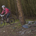 Photo of Kirsty SHEARER at Innerleithen