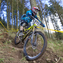 Photo of Richard WEBSTER (1) at Ae Forest