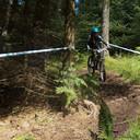 Photo of Elena MELTON at Ae Forest