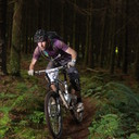 Photo of Dave BURCHILL at Grogley Woods, Bodmin