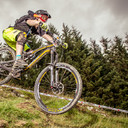 Photo of Tom BEWICK at Dyfi Forest
