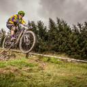 Photo of Gerard BIRCH at Dyfi Forest