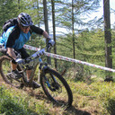 Photo of John BELLIS at Grizedale Forest