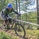 Photo of Rhys WILLIAMS (vet) at Grizedale Forest