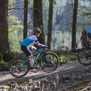 Photo of untagged at Whinlatter