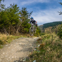 Photo of an untagged rider at Rostrevor, Co. Down