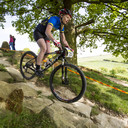 Photo of Emily QUANTRILL at Hadleigh Park