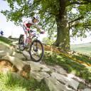Photo of Josun COLE at Hadleigh Park
