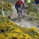 Photo of an untagged rider at Aberystwyth