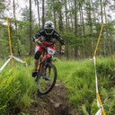 Photo of Graham SHELDON at Grizedale Forest