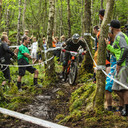Photo of Dannie REID at Grizedale Forest