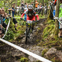 Photo of Tom SPRIGGE at Grizedale Forest