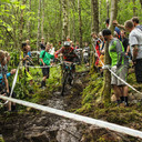 Photo of Daryl BILES at Grizedale Forest