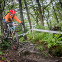 Photo of Michael PAGET at Grizedale Forest