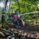 Photo of Nicole MALLETT at Grizedale Forest