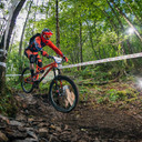 Photo of Neil HALCROW at Grizedale Forest