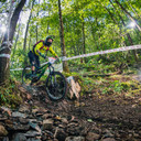 Photo of Rene DAMSEAUX at Grizedale Forest