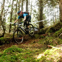 Photo of Will WILD at Kirroughtree Forest