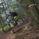 Photo of Tony HICKS at Great Wood, Quantocks