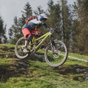 Photo of Traharn CHIDLEY at Dyfi Forest
