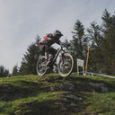 Photo of Tom GRICE at Dyfi Forest