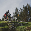 Photo of Tom STACEY (u19) at Dyfi Forest