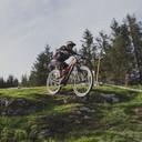 Photo of Matt HENDING at Dyfi Forest