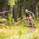 Photo of Ian RANKIN at Kielder Forest