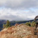 Photo of an untagged rider at Dyfi Forest