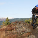 Photo of Joe BARNWELL at Dyfi Forest