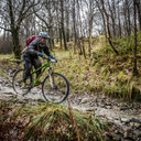 Photo of Matthew BENNETT at Grizedale Forest