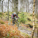 Photo of Tim MARTIN (gvet) at Grizedale Forest