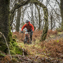 Photo of Josh GIBSON at Grizedale Forest