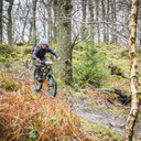 Photo of Brett JACKSON at Grizedale Forest