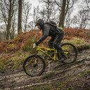 Photo of Mark GIBSON at Grizedale Forest