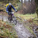 Photo of Neil LIMB at Grizedale Forest