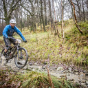 Photo of Andy SMITH (vet) at Grizedale Forest
