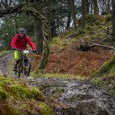 Photo of Samuel ETHERINGTON at Grizedale Forest
