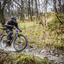 Photo of Alan FARNDON at Grizedale Forest