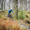 Photo of Stu LILLIS at Grizedale Forest