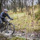 Photo of Tony GREGG at Grizedale Forest