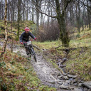 Photo of Drew ALKER at Grizedale Forest