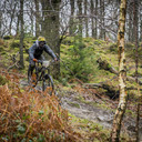Photo of Lewis HEAP at Grizedale Forest