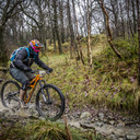 Photo of Henry FURBANK at Grizedale Forest